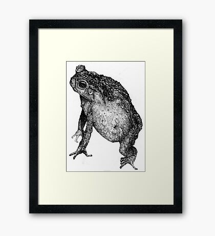 Too Much Time On My Hands Framed Print