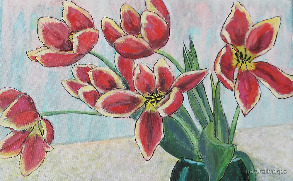 Myra's tulips by naturalimages