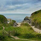 Lansallos south coast of Cornwall by eddiej