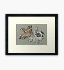 Pastel dog portrait Framed Print