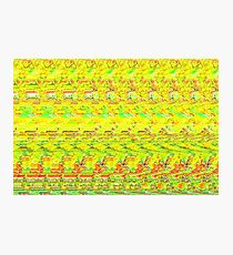 3D Stereogram - Duck Photographic Print