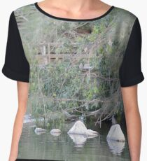 Centenary Lakes again - Caboolture Women's Chiffon Top