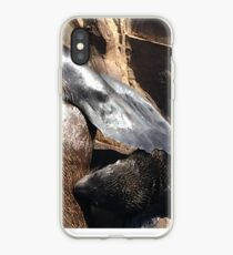 Living Coast (Lifes Miracles) iPhone-Hülle & Cover