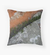 Lichen Rock - Flinders Island, Tasmania Throw Pillow