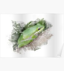Frog Watercolor Poster