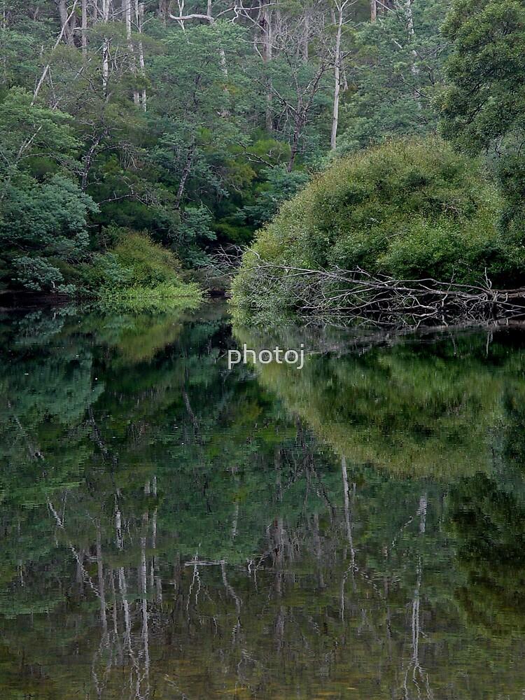 photoj Tasmania Landscape by photoj