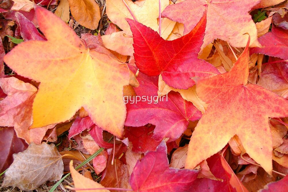 Autumn III by gypsygirl