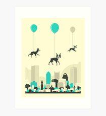 Flock of Boston Terriers Art Print