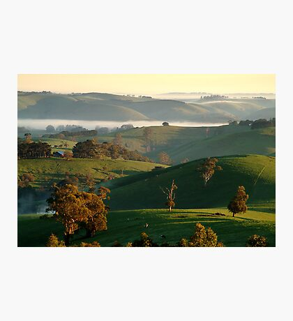 Rolling Hills, Dollar Gippsland Photographic Print