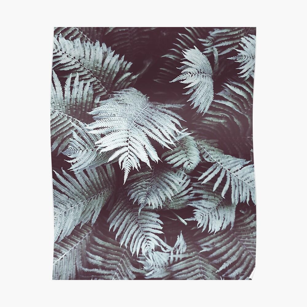 Farn, tropische Blätter, grüne Blätter, Blatt, moderne Kunst, Wandkunst, Druck, minimalistisch, modern, skandinavischen Druck Poster