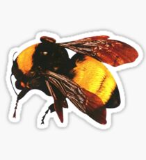 Tyler, the Creator - Bee Sticker
