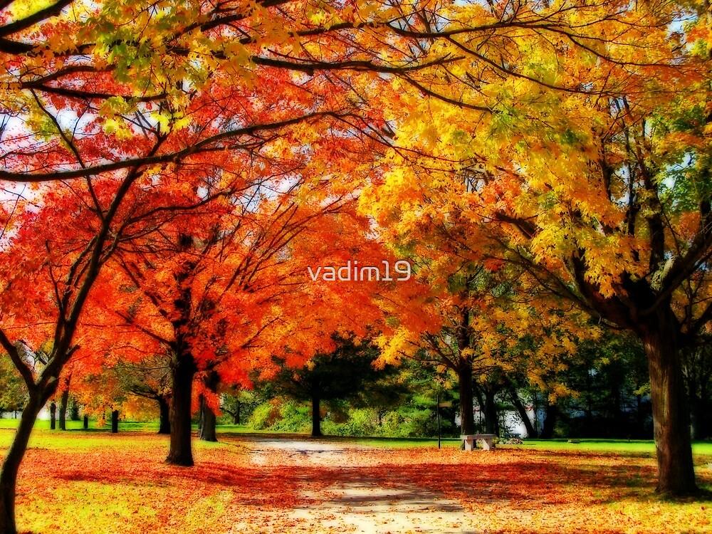 Orange, Yellow and Green by vadim19
