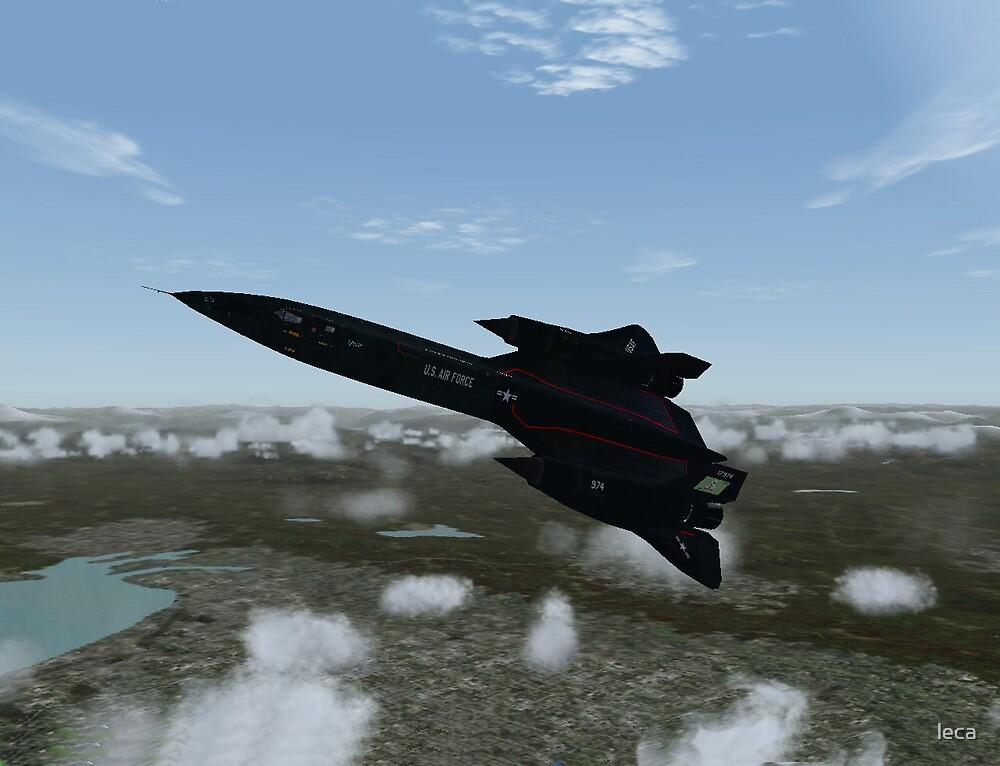 If I were a Blackbird.... by leca