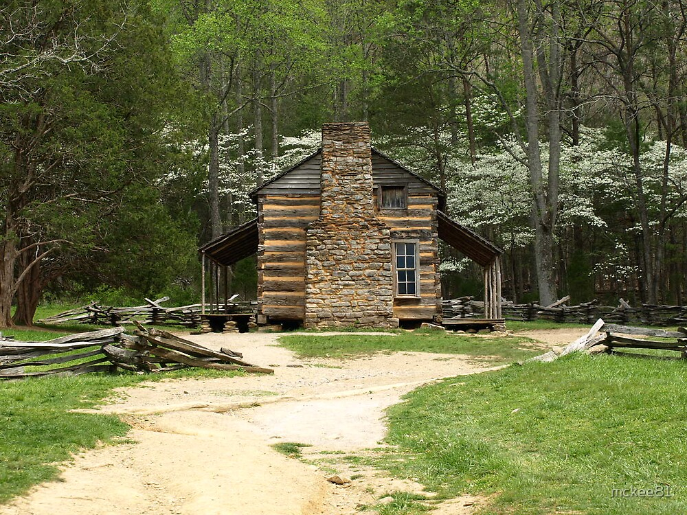 Oliver Family Cabin by mckee81