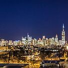 A panoramic look at the Chicago Skyline  by Sven Brogren