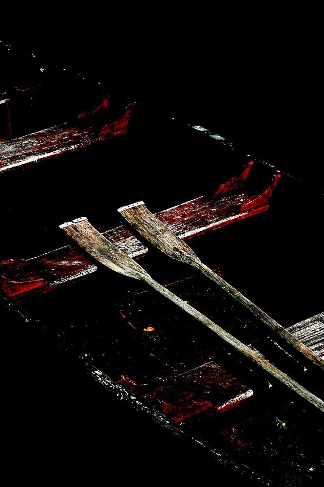 Oars at rest by ragman