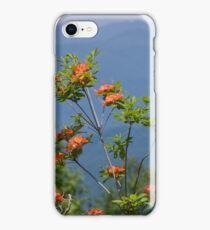 Flame Azalea III iPhone Case/Skin
