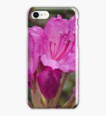 Appalachian Beauty iPhone Case/Skin