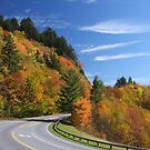 Newfound Gap Road by Gary L   Suddath