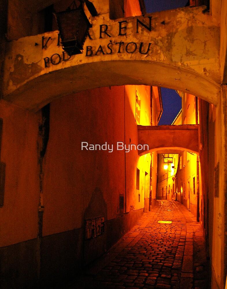 Cobblestone Alley by Randy Bynon