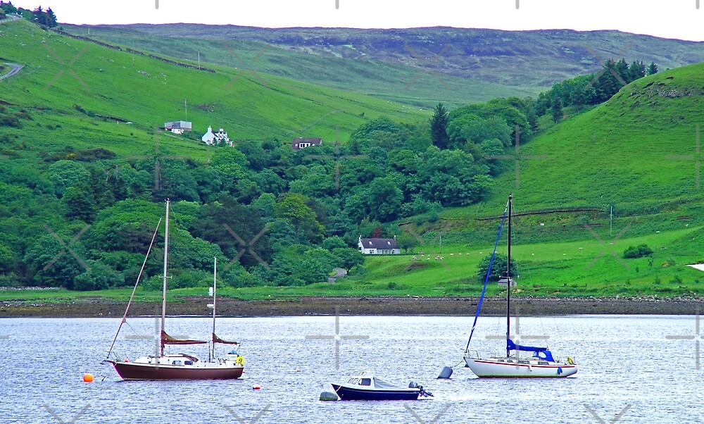 Skye View V by Tom Gomez