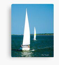 Sailboats on the Horizon Canvas Print