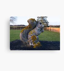 Stone Squirrel Canvas Print