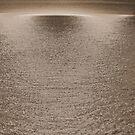 Divine Light - Byron Bay by Louise Linossi Telfer