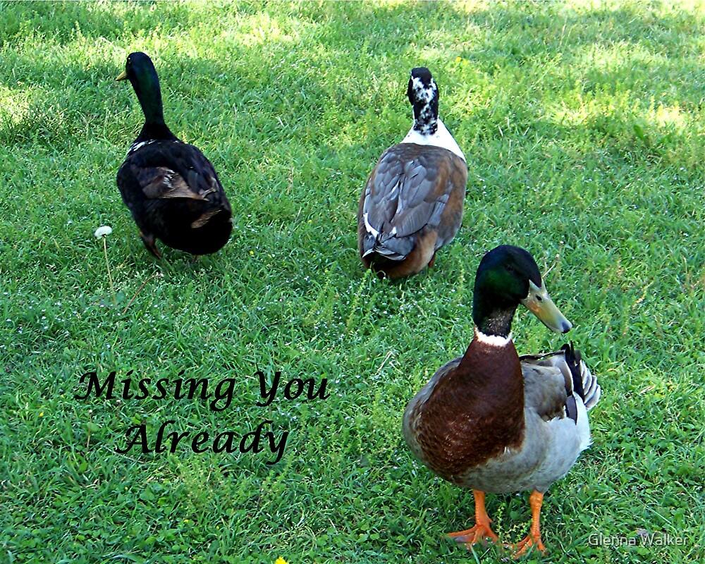 Missing You Already by Glenna Walker