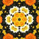 Flower Power by Louise Linossi Telfer
