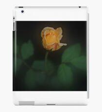 Yellow Rose Beauty iPad Case/Skin