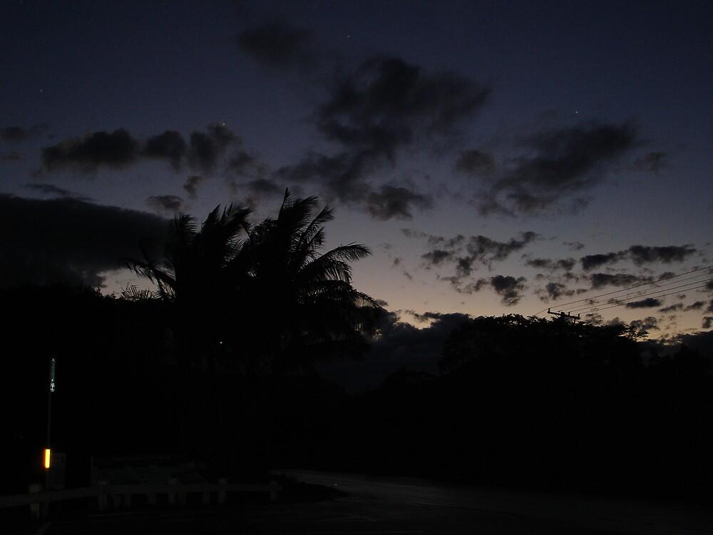 Hawaiin Night by Xyandor
