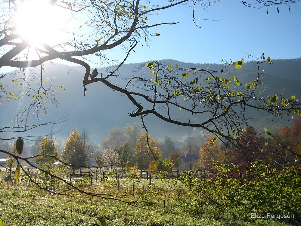 A Harrietville Morning by Eliza Ferguson