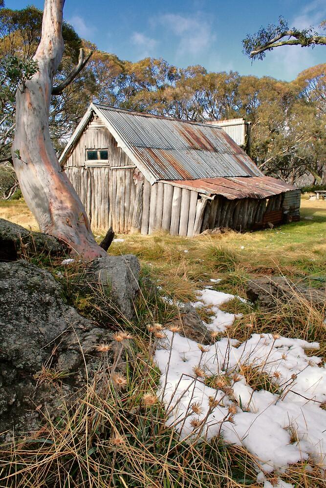 Autumn Snow at Wallace's Hut by David Haviland