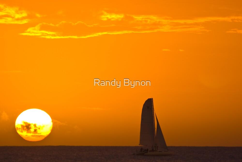 Sailing by Randy Bynon