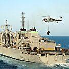 Ein MH-60S Knighthawk hebt Fracht vom schnellen Kampfstützschiff USNS Rainier. von StocktrekImages