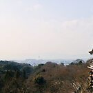 Kyomizu Panorama by demistified