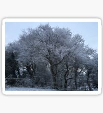 Snowy Serenity Sticker