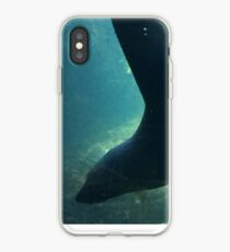 Living in the Shawdos Fur Seal Living Coast iPhone-Hülle & Cover
