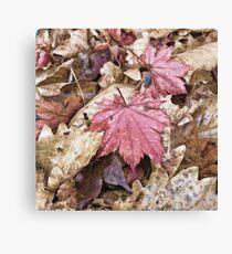 Autumn mood Canvas Print