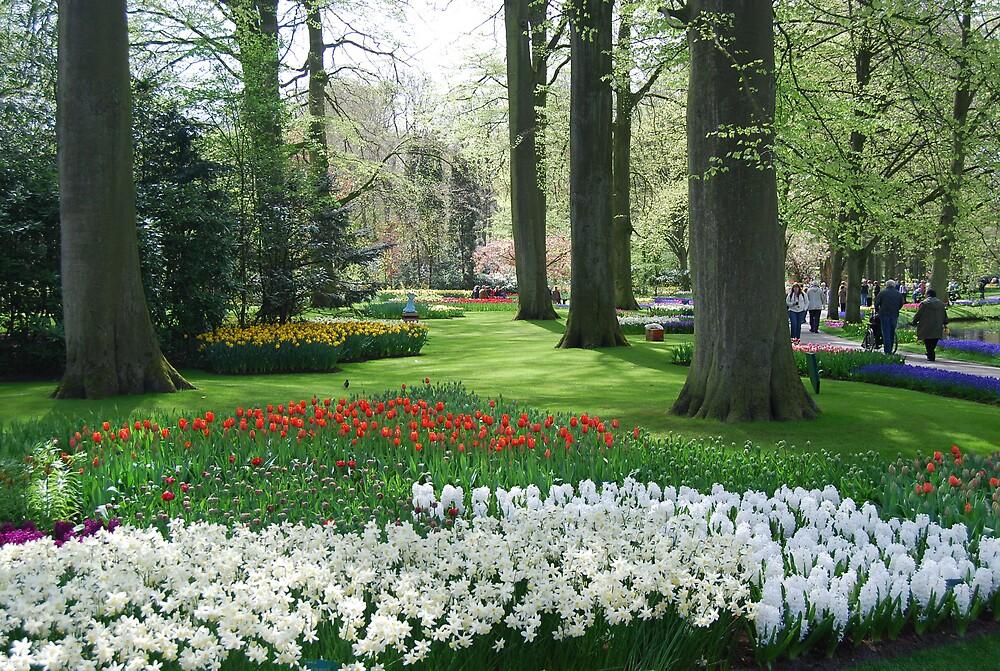 Keukenhof,Holland by patilan