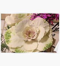 Kale Flower & Orchids Poster