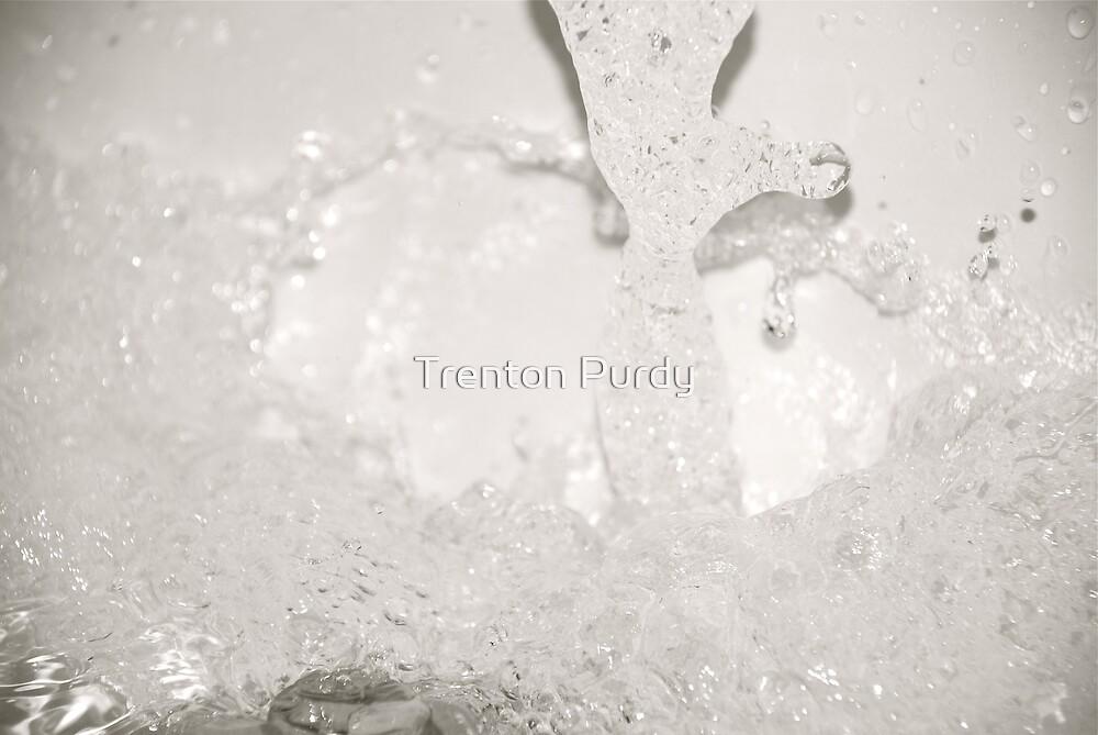 Sploosh! by Trenton Purdy