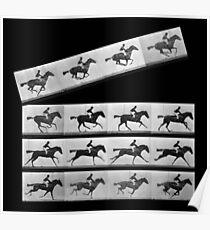Horses cinema Poster