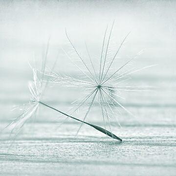 snowflake by Ingz