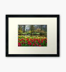 Its Spring!! Framed Print