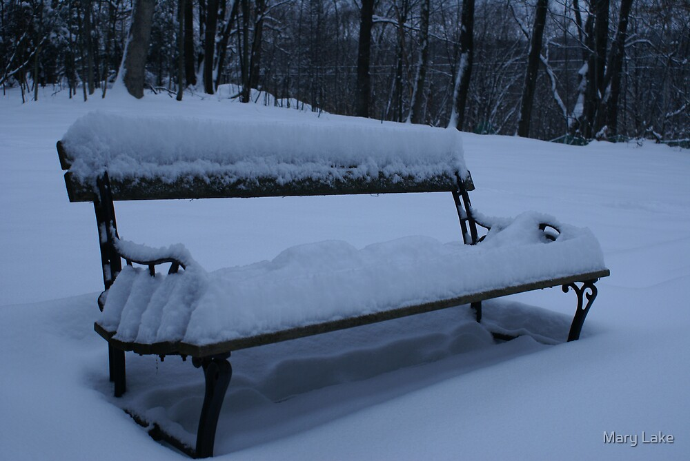 The Bench by Mary Lake