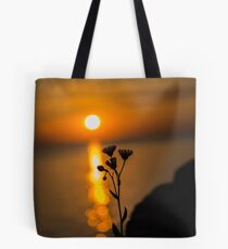 Soaking up the Sun Tote Bag