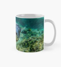 Inquisitive Puffer Fish (Tetraodontidae) Mug