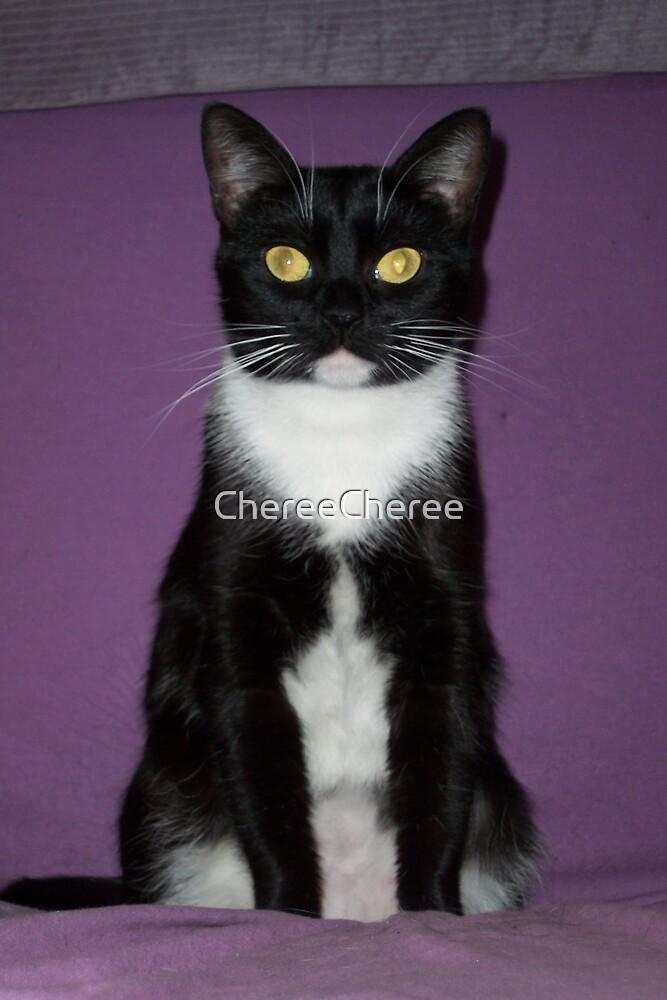 My Cat's Portrait by ChereeCheree